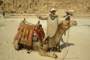 dovolená v Severní Africe