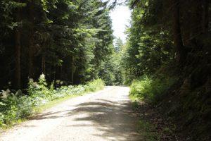 Lesnictví a ochrana přírody