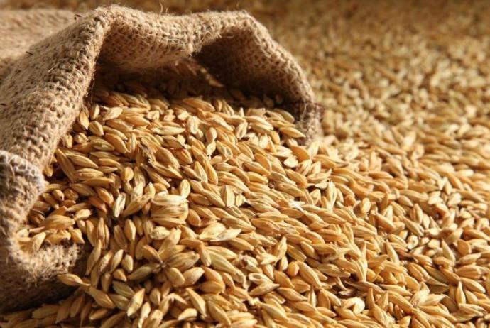 Ázerbajdžán snižuje dovoz pšenice o 19%