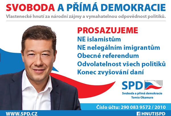 Přímá demokracie a její instituce v České republice.
